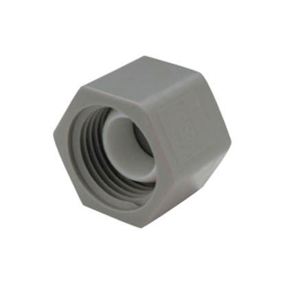 "Picture of QEST Qicktite (R) 3/4"" FPT Gray Acetal Test Cap  10-3143"